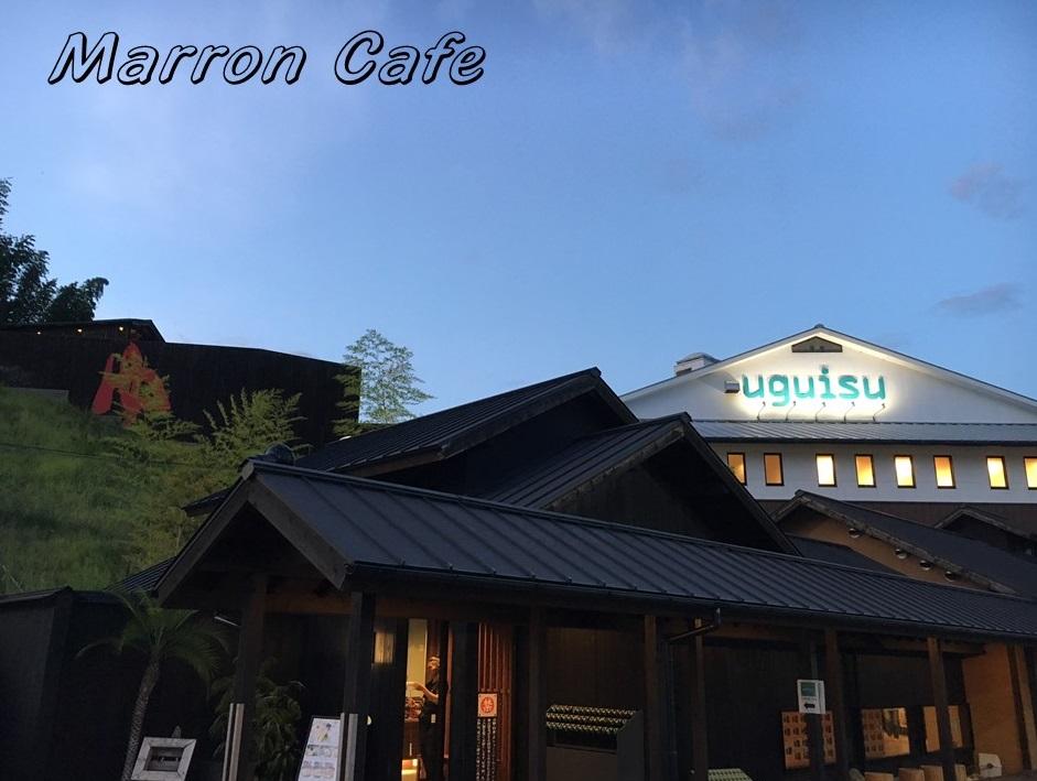【大阪】人気のスーパー銭湯「Book&Spa uguisu」へ行ってみた!