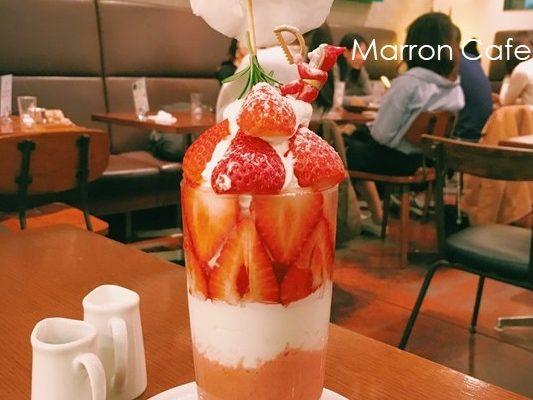 【大阪】インスタ映え!カフェ&ブックスビブリオテークのクリスマススイーツ特集