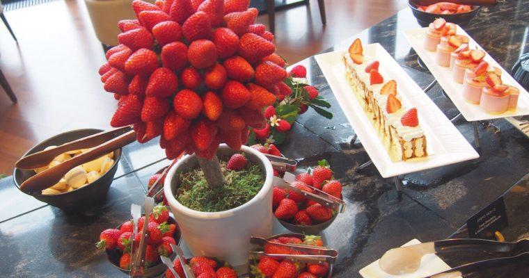 【大阪】いちごビュッフェに行くならコンラッド大阪がおすすめ★「Strawberry Sensations(ストロベリー・センセーションズ)」を徹底レビュー!